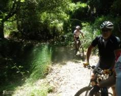 Escursione Mountain Bike sulle Madonie